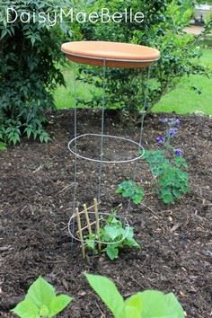 DIY Tomato Cage Bird Bath or Feede