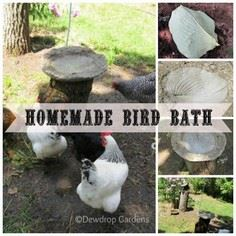 Home-made Bird Bath