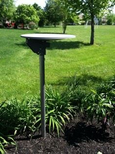 Perfect Platform Bird Feeder/Bath