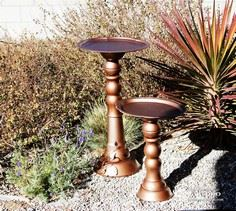 Birdbath and Bird Feeder