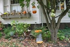 DIY Pumpkin Bird Feeder and Bath