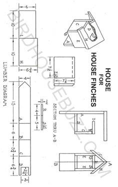 House Finches Bird House Plans