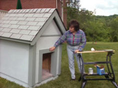 backyard doghouse for pooch