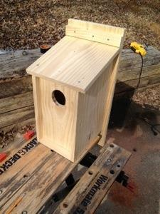 how to make a screech owl box