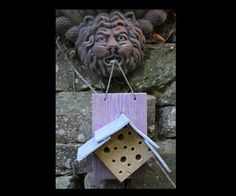 4 Home-made Insect Hotel