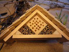 Insect house for mason bees
