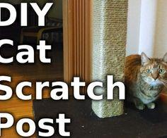 Make a Cat tree - video
