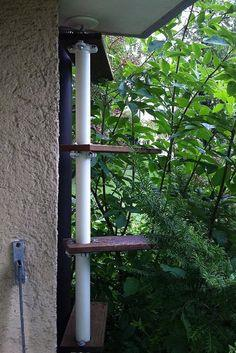 Stolmen outdoor cat ladder