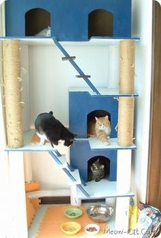 Cat tree plan