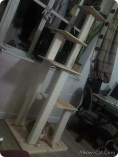 DIY 4 in 1 cat tree