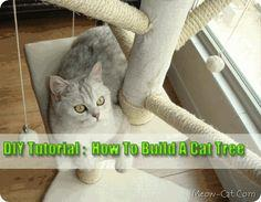 How-To-Build-A-Cat-Tree