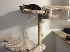 Star Trek Cat Tree