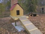 HOW TO BUILD A DOG TREEHOUSE