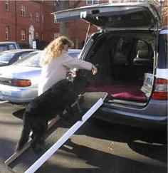 Deborah Zelten's Do-It-Yourself Dog Ramp