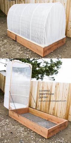 Covered Greenhouse Garden
