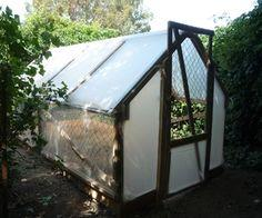 The 5 Dollar Greenhouse