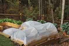 Hoop Houses for Raised Beds