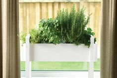 Create a Planter Box