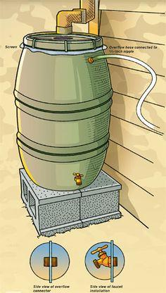 Build a rain barrel with free plans