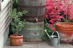 How To: Build a Rain Barrel