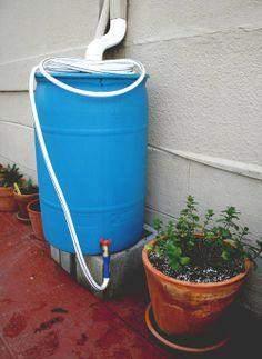 Make a Rainwater Collection Barrel