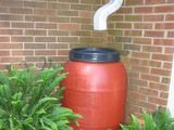 How to build a rain barrel platform