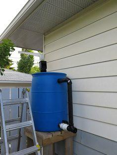 Gravity feed rain barrel garden watering