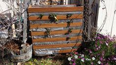 Simple Vertical Strawberry Planter