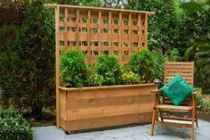 Planter with built-in trellis