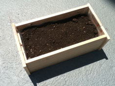 Easy Planter Project